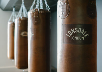 Boxing punch bags